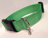 "LARGE 1 1/2"" Simply Lime Green dog collar"