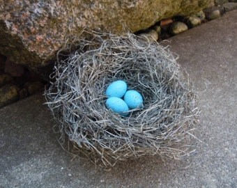 Shabby Rustic Handmade Bird Nest with Turquoise Robin's Eggs Woodland Decor AMarigoldLife