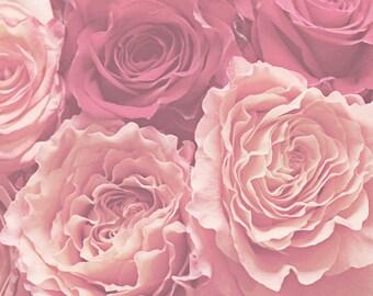 flower photography, floral nursery art, rose art, rose photography, flower art, floral artwork, floral wall art, girl bedroom, pink roses