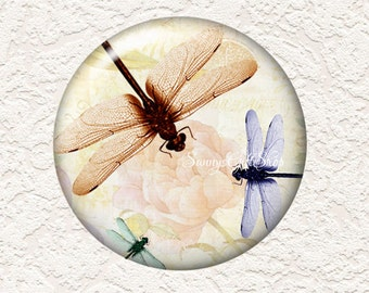 3.5 Inch Large Pocket Mirror Dragonfly with Black Velour Bag  Buy 3 Get 1 Free  026LM