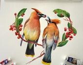 Cedar Waxwing Love - Original Watercolor working painting
