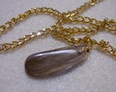 Petrified Wood Necklace #5 on Gold Chain with Silver Accents
