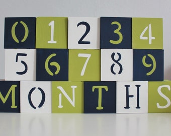 Baby Blocks- Photo Prop for Monthly Baby Pictures- Set of 16 Blocks
