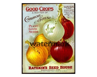 """Seed Catalog Cover, 5""""x7"""" Print, Vintage Inspired, Circa 1899, Seed Pack Art, Garden Decoration, Wall Art Print, Antique Kitchen Art, 21"""