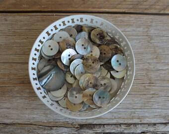Vintage Button Collection- Capiz Shells