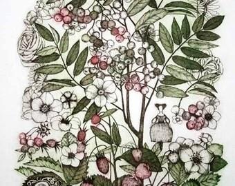 Etching / limited edition original etching (printmaking / graphic art) / original print / original art / botanical print - 'Rowan II'