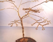 Gold Wire Earring Tree