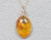 Baltic Amber and Goldfilled  Pendant