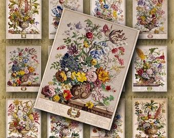 2.5x3.5 ROBERT FURBER Twelve Months of Flowers Digital Printable collage sheets - All 12 Antique Botanical Prints