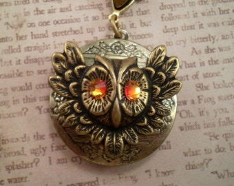 Owl Necklace Locket, Gift for Her, Handmade Jewelry, Steampunk Necklace