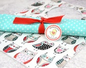 Bib and Burp Cloth Set- Black Red Turquoise Doodle Owls