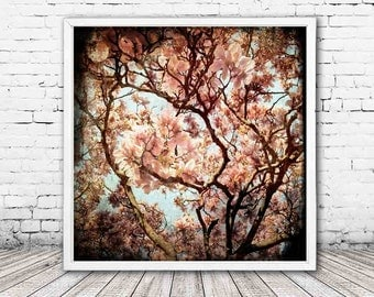 Renaissance - PHOTO, magnolia photo, magnolia tree photography, magnolia flowers, pink spring photo, TTV, girls room, feminine decor