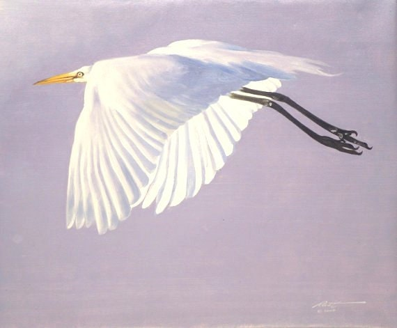 Great white egret wildlife painting 20x24 oils on canvas by for White heron paint