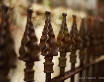 Fence Photography New Orleans Streets  Architecture Photography City Architectural Rustic Industrial decor Fine Art Photography Print