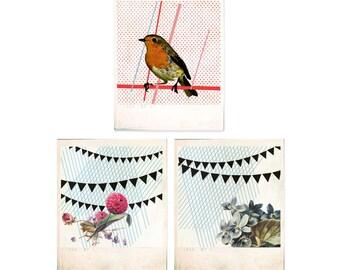 3 flower & robin cards