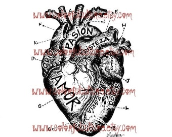 "Corazon Anatomico / Anatomical Heart "" Art Print by Laura Gomez - Mexican Colorful Art - Red, Black Brown, Sepia, Pink Black or White Heart"