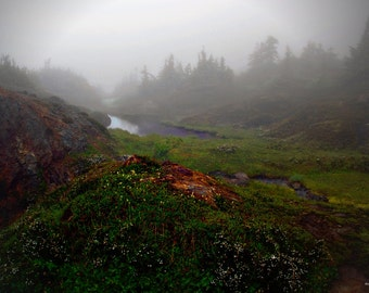 Morning Mist in Hyder Alaska