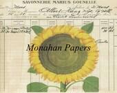 Sunflower - BOT12 - 11x17 Artist Print