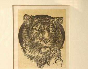 Vintage Jack Coughlin Color Wood Engraving Framed, Tiger, Limited edition, Tiger art print, Etching, Animal art, Connecticut, Wildlife art