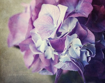 Purple Nature Print or Canvas Wrap, Purple Hydrangea Photography, Dramatic Purple Flower Picture, Purple Bedroom Decor, Lilac, Violet.