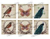 Collage Nature Collection INSTANT DOWNLOAD, printable graphic clipart - 6 pieces birds, butterfly, peacock