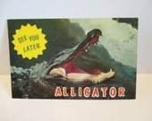"Vintage ""See You Later Alligator"" Post Card from Florida"