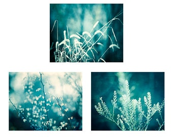 Teal Wall Art Set - three 3 nature pictures dark aqua photos turquoise artwork branches prints modern wall decor branch grass photography
