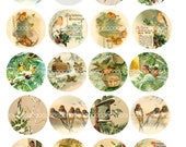 "Digital Clipart, instant download, Christmas birds, robins, thrushes, snow ,bells 2"" circles--Digital Collage Sheet (8.5 by 11 inches) 1934"