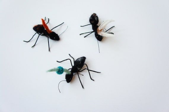 Needle felted ants with felt Cordyceps infections (HOLD FOR MARK)