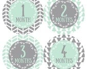 FREE GIFT, Gender Neutral Baby Month Stickers, Tribal Monthly Baby Stickers, Tribal Baby Month Stickers, Mint, Gray, Grey, Tribal Arrows