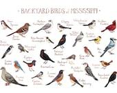 Mississippi Backyard Birds Field Guide Art Print / Watercolor Painting / Wall Art / Nature Print / Bird Poster