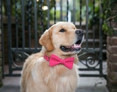 Replacement Bow Tie or Belle Bow- You Choose The Fabric!