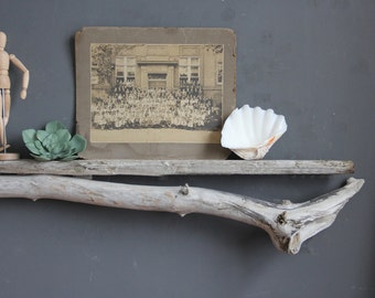 Natural Driftwood Shelf - Perfect Mantle // Size EXTRA LARGE