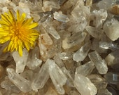 RARE British UK Celtic Druid Small Clear Quartz Crystal Points Clusters - 50g Batches - 5-30mm WALES ~ Ancient Welsh Energy ~ Master Healer