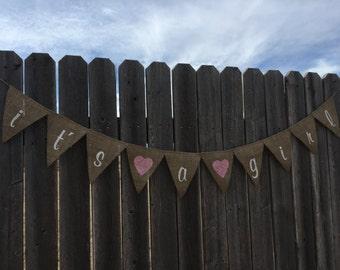 Burlap Baby Girl Banner / Bunting
