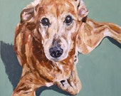 Custom Pet Portrait Oil Painting 20x20 Pet Memorial Birthday  Gift