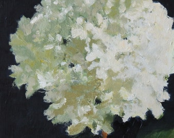 White Hydrangea Flower, Still Life Painting, Oil on wood, 10x10 inch Canadian Fine Art