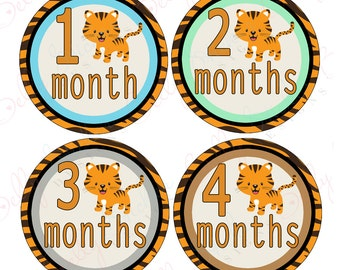 Boy Monthly Baby Stickers, 1 to 12 Months, Monthly Bodysuit Stickers, Baby Age Stickers, Adorable Tigers
