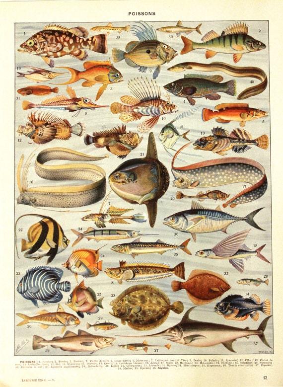 Poster Küche Retro ~ Logisting.Com = Varie Forme Di Mobili Idea E