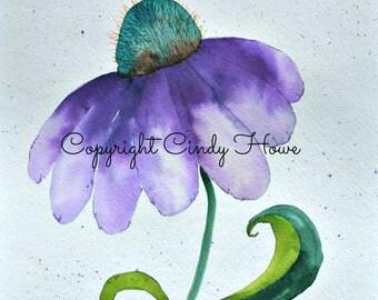Original watercolor, OOAK, cone flower, purple cone flower, floral, watercolor, flower, floral watercolor, flower petals, fantasy flower