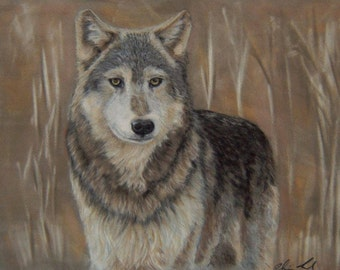 High Quality Prints of My Lone Wolf Pastel Painting
