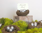 Silver Nest Place Cards, Wedding Escort Card Decorations, Table Setting, Wedding Favors, Baby Shower, Woodland Spring