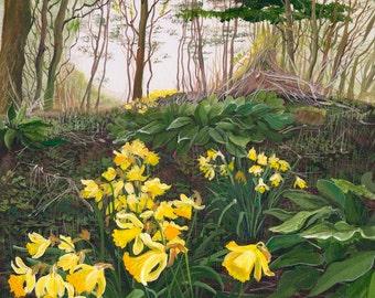 Daffodil Woods - Limited Edition Print