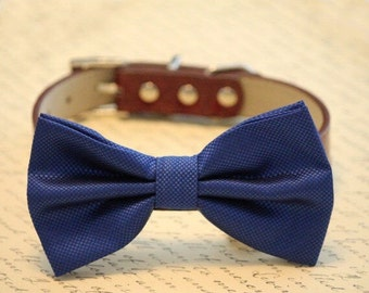 Royal Blue dog bow tie collar - high quality leather and fabric, Blue Wedding accessory, some thing blue, Dog lovers, dog collar
