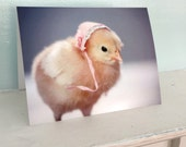 Greeting Card Chicks in Hats Photo Card Chicken Wearing A Miniature Pink Bonnet Baby Animals #57