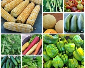 Heirloom Family Favorites Garden Seed  Collection  Non GMO