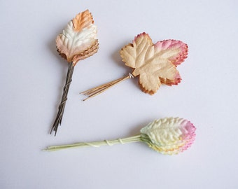 30  Mulberry  Paper Leaves / Assorted Leaves