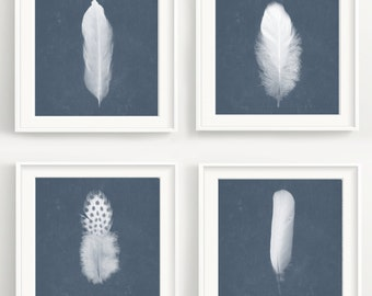 Feather Print Set - 4 Bird feathers with vintage texture. Nature, forrest poster, photography