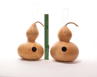 Two (2) Wide Bottle Gourd Birdhouses, natural gourd birdhouse, dried gourd birdhouse