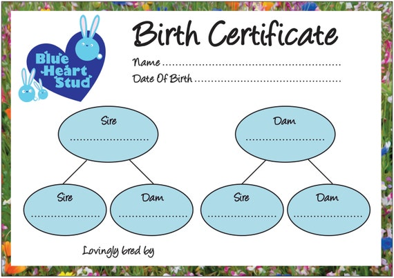 Great Pet Birth Certificate Template Pictures Pet Health